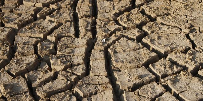 Metade do Brasil sofre com a seca prolongada (e com a falta de ideias e soluções)