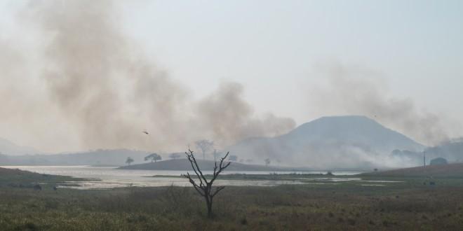 Brasil tem maior número de queimadas do século