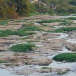 Rio Piracicaba seco: nascentes desapareceram (Foto José Pedro Martins)