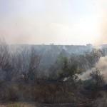 Queimada atingiu mata próxima a condomínio em Sumaré (Foto Adolfo Calderón)