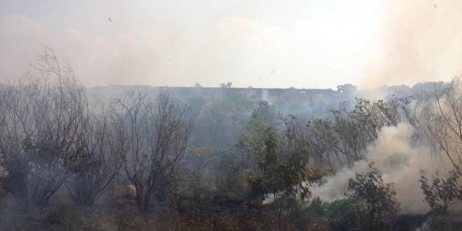 Queimadas avançam por todo Brasil e fecham Parque Nacional da Serra do Cipó (MG)