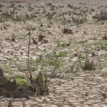 Não é deserto, é um dos reservatórios do Cantareira seco (Foto Adriano Rosa)