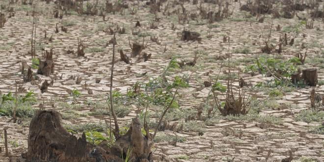 Sem chuva, crise da água pode virar catástrofe e para jurista cidadão pode processar Estado