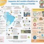 Infográfico original produzido por Noticias Aliadas, parceira da Agência Social de Notícias