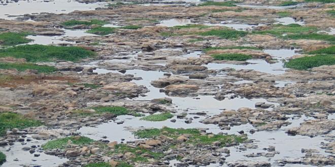 Estiagem mostra que crise hídrica ainda não foi superada na região de Campinas