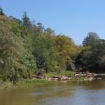 Vazão do rio Atibaia estava muito baixa nos últimos dias (Foto José Pedro Martins)