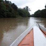 Vazão do rio Atibaia subiu rapidamente com fortes chuvas