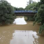 Rio Atibaia, em Campinas: bacia do Piracicaba tem rios de domínio federal e estadual (Foto Adriano Rosa)