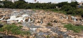 """Região de Campinas e Piracicaba é """"heptacampeã"""" em mortandades de peixes"""
