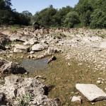 Rio Atibaia, Campinas, 2014: crise hídrica sempre desperta reflexões  (Foto Adriano Rosa)