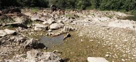 Região de Campinas terá séria diminuição na disponibilidade de água