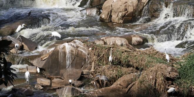 Região de Campinas e Piracicaba vai discutir alternativas para crise hídrica