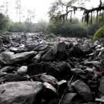Trecho do rio Atibaia em Campinas, em2014: crise hídrica demanda discussão ampla, permanente e multidisciplinar (Fotos Adriano Rosa)