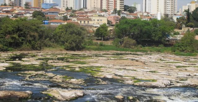 Chuva aumenta vazão de rios e vento de 142,5 km/h derruba árvores em Campinas e região
