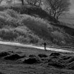 Como o indivíduo percebe o lugar onde vive e convive? A indagação sempre presente na exposição Paisagem Silenciosa (Foto Martinho Caires)