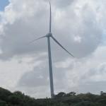 Novas fontes de energia são fundamentais para corte de emissões (Foto José Pedro Martins)