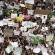 Blogs ASN: O absurdo golpe contra a EBC e a TV Brasil