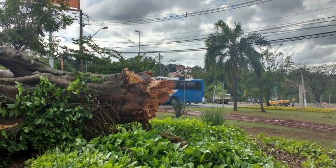 Blogs ASN: Campinas esteve perto da tragédia no Dia Mundial do Meio Ambiente