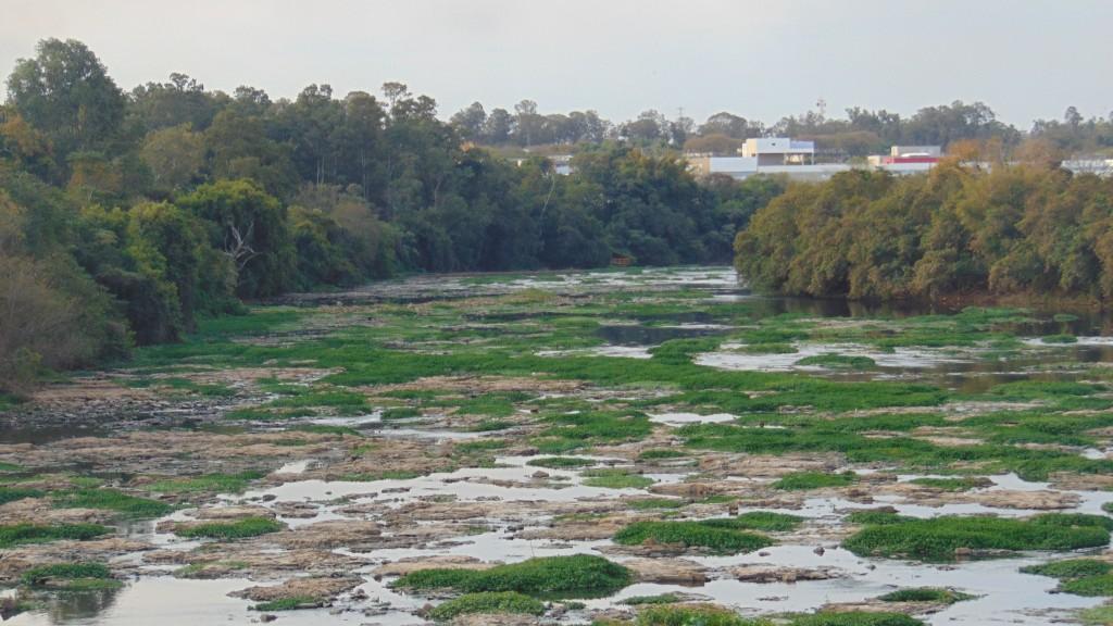 Em agosto de 2014, rio Piracicaba quase seco: impacto generalizado da forte estiagem  (Foto José Pedro Martins)