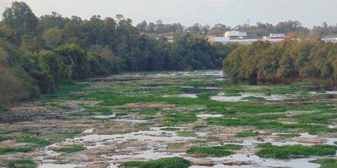 Educação ambiental: lições da região de Piracicaba e Campinas em livro