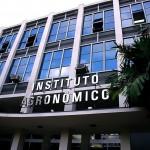 Instituto Agronômico de Campinas é referência em pesquisas na agricultura (Foto Martinho Caires)