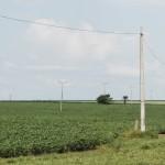 Soja, um dos principais componentes do agronegócio brasileiro (Foto Adriano Rosa)