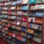 Muro de livros, instalação em São Paulo, com produções de Dulcinéia (Foto Lúcia Rosa)