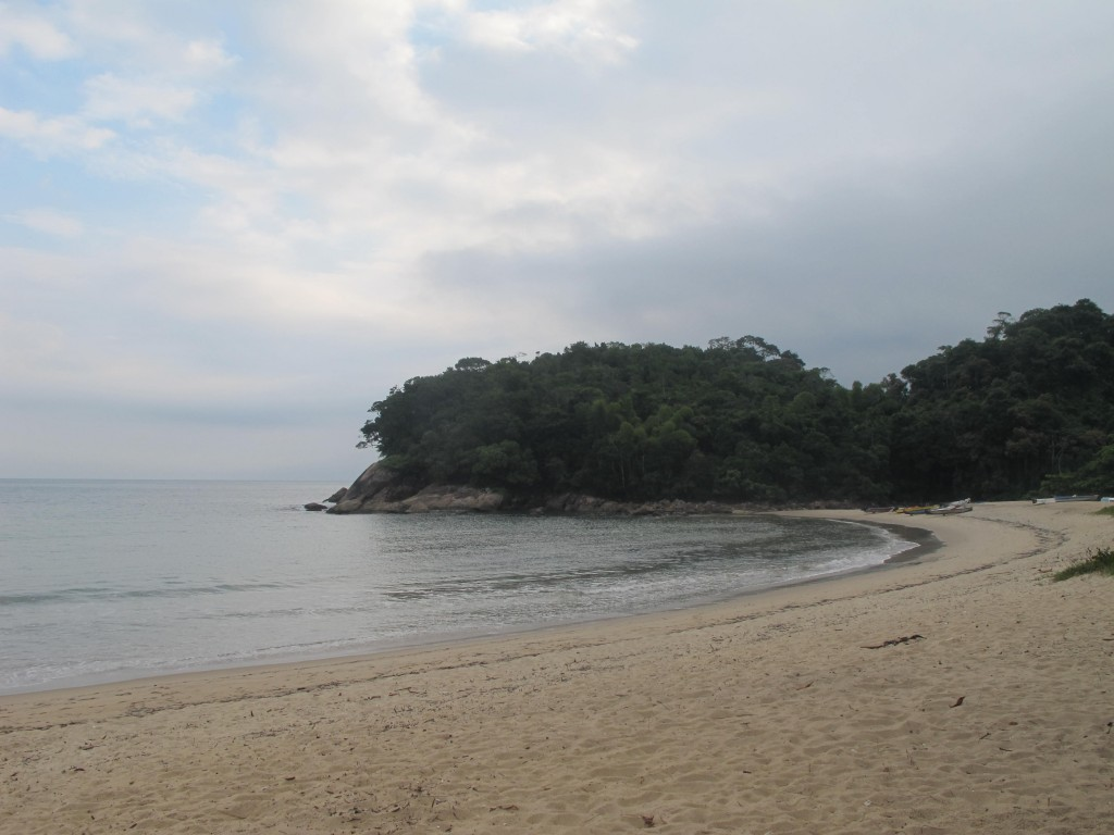 Praia do Cambury, em Ubatuba, uma das áreas de atuação dos pesquisadores do Projeto Tamar (Foto José Pedro S.Martins)