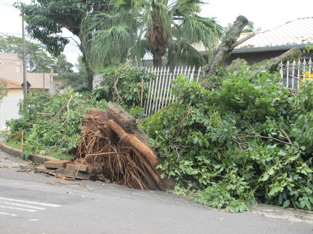 Muitas casas em Campinas foram atingidas pela microexplosão atmosférica em junho de 2016: eventos climáticos extremos tendem a se multiplicar (Foto José Pedro S.Martins)