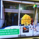 Simulação com ipê amarelo, uma das espécies que serão levadas à avenida Francisco Glicério (Foto José Pedro Martins)
