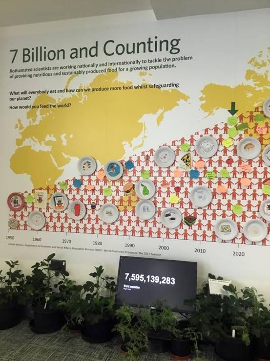Como produzir mais comida enquanto salvamos o planeta? (Foto: André Sarria)