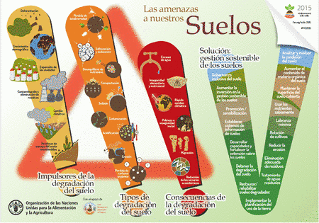 Principais ameaças aos solos e sugestões de ação, segundo a FAO (Divulgação Aliança Mundial pelo Solo)