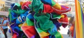 Casamentos homoafetivos crescem no Brasil, mas ainda há resistência (DDHH Já – Dia 16, Art.16)