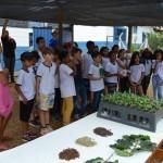 Atividade com uma das 181 escolas participantes (Foto Divulgação ABAG/RP)