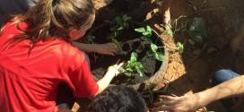 Lona das Artes faz ações em Campinas e Hortolândia no Dia do Meio Ambiente